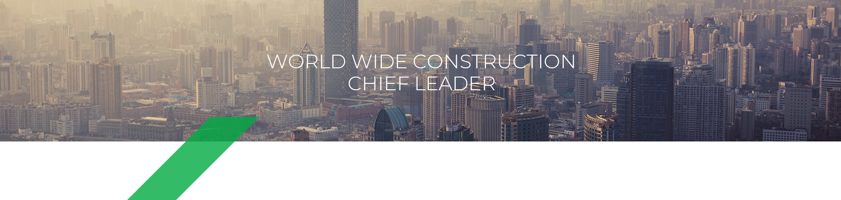 WORLD WIDE CONSTRUCTION CHIEF LEADER